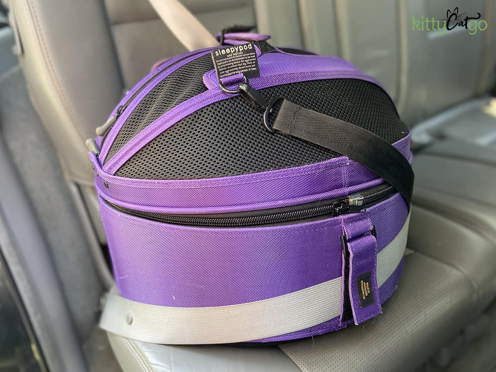 How to Travel with a Cat in a Car - Sleepypood carrier in car