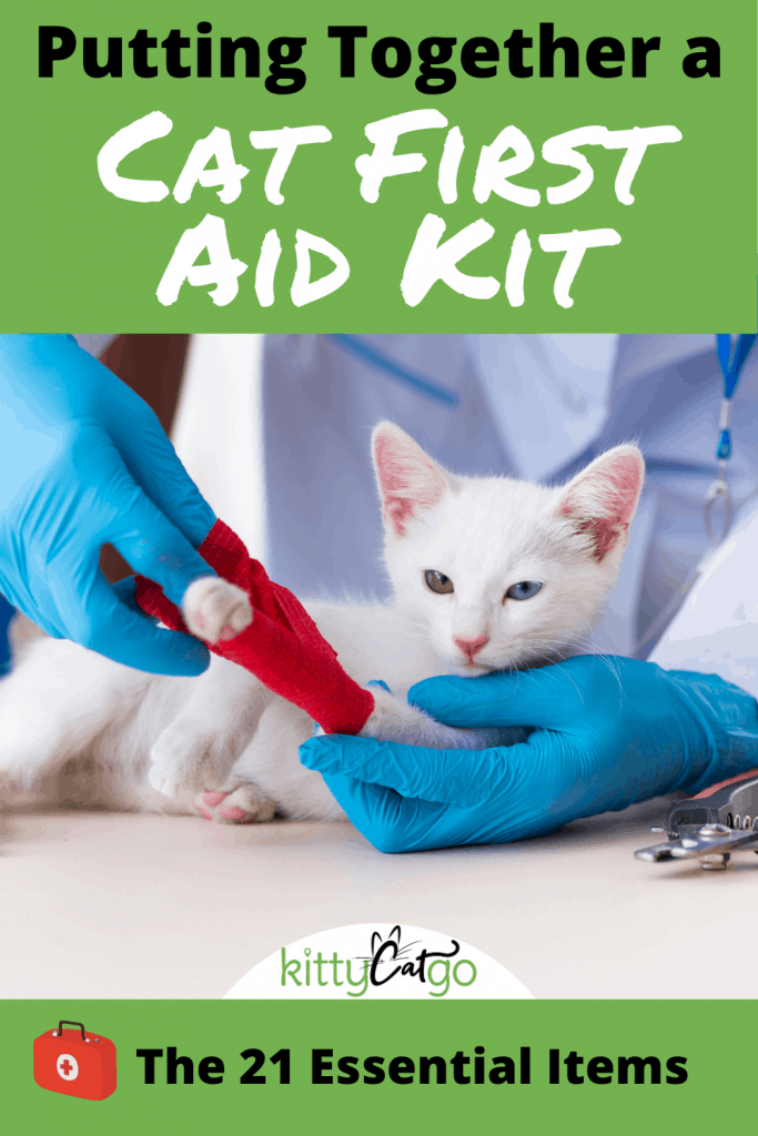 Putting Together a Cat First Aid Kit - Pinnable Image