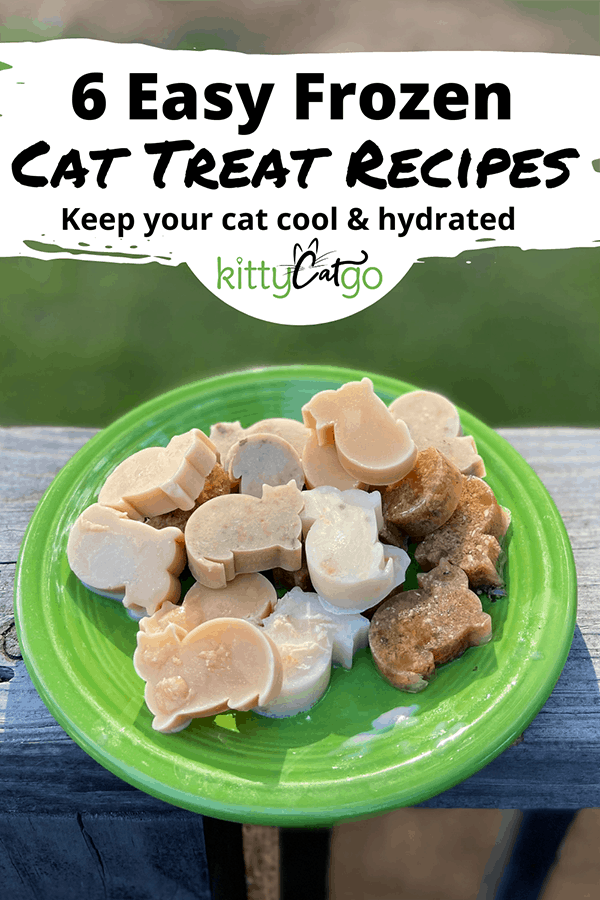 6 Easy Frozen Cat Treat Recipes - Pinnable Image of a plate with frozen treats