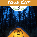 Pinnable Image - The Ultimate Guide to Camping with Your Cat