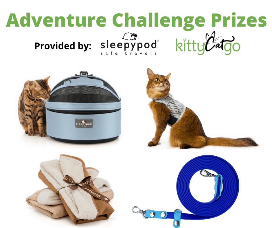 Fall Adventure Challenge Prizes provided by Sleepypod and KittyCatGO